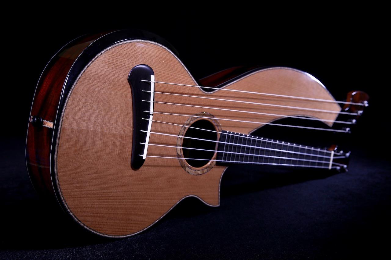 Ukulele Friend Custom Duane Noble Harp Ukulele Ukulele